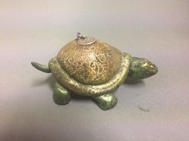 Click to view detail for CS-004 Little Turtle