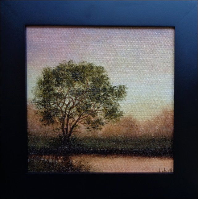 Cottonwood Tree  at Hunter Wolff Gallery