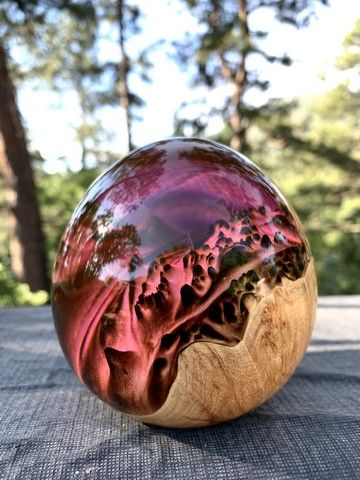 Click to view detail for SH050 Maple/Resin, Purple 3.5x3.5