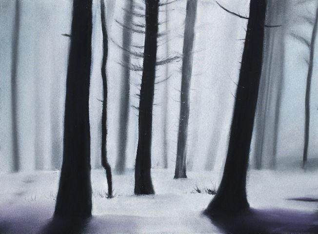 Click to view detail for The Quiet Forest 7 ½ x 10 ¼
